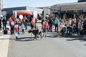 Waverly Puppy Bowl 2019